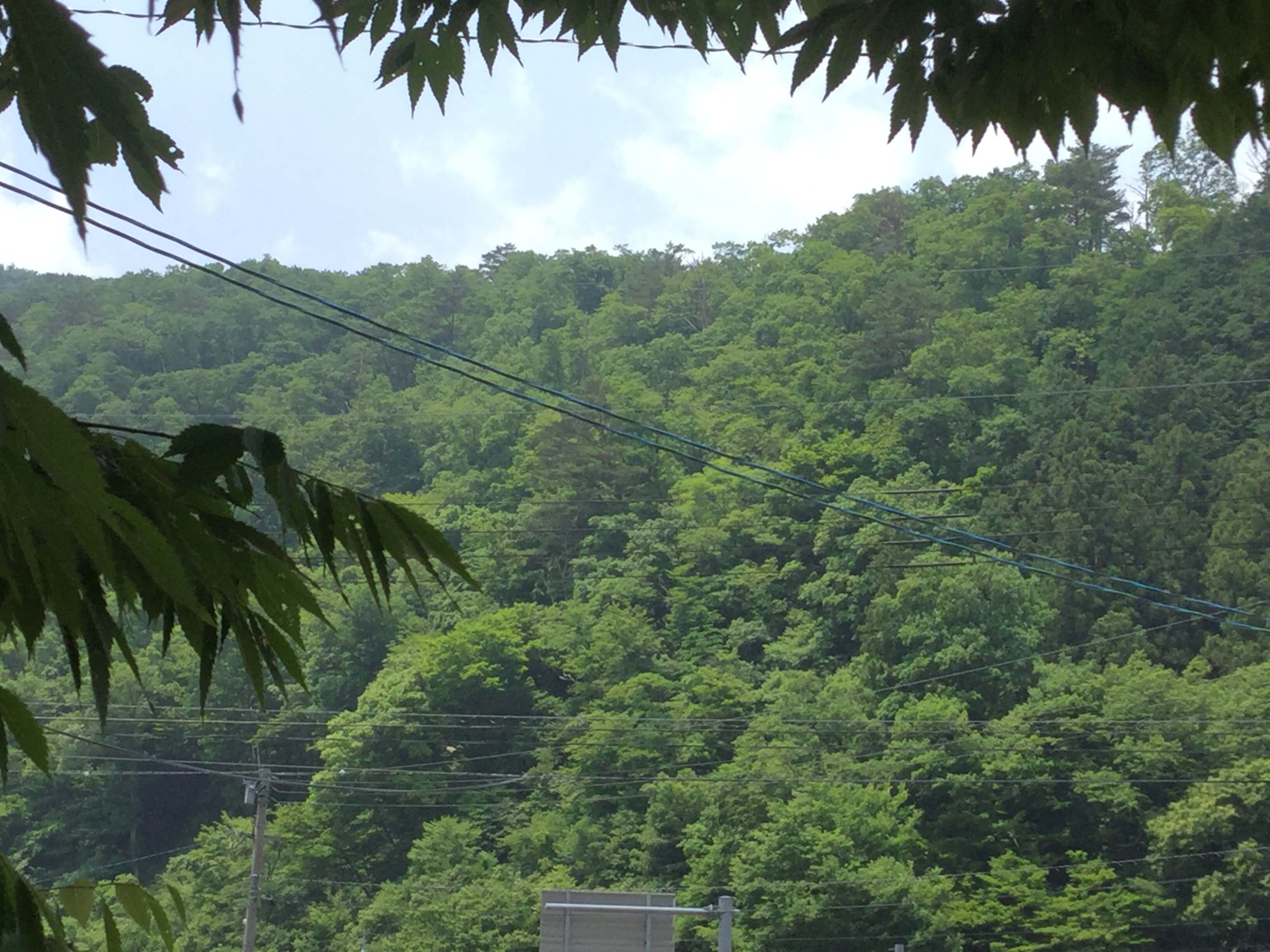 inaka_shimane.jpg
