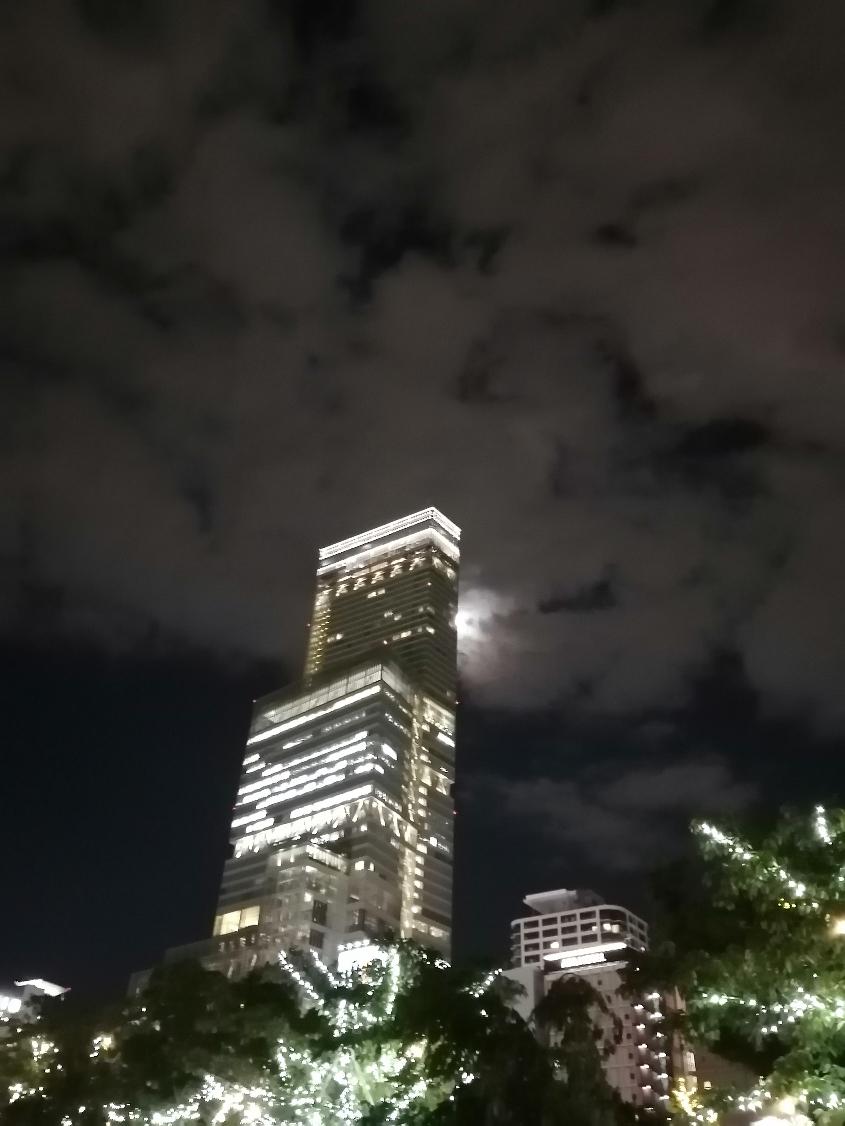 Halkas-Night.jpg